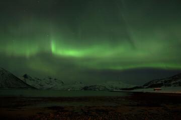 Polarlichter in Lyfjord, Norwegen