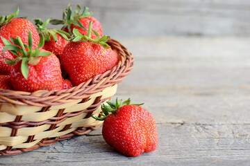 Ripe sweet strawberries fruits. Large red strawberries in a wicker basket and on rustic wooden background with copy space for text. Closeup