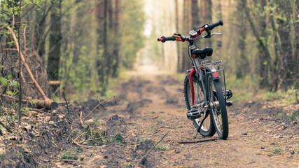 Bicycle on a forest path