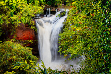 Waterfall in beautiful forest greenery in Thailand