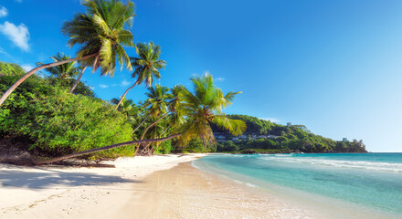 Amazing  tropical paradise Anse Takamaka beach on Seychelles.