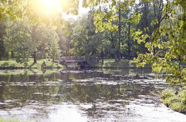 the bridge over the pond overgrown with a duckweed. Catherine Park. Pushkin (Tsarskoye Selo). Petersburg