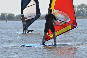 Zwei Windsurfer und ein Hund gleiten auf dem See