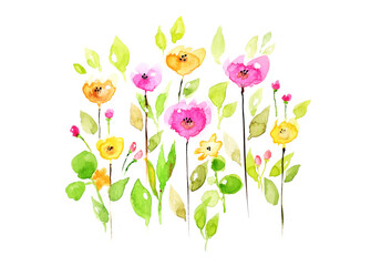watercolor flowers on white background