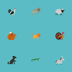 Flat Turkeycock, King, Predator And Other Vector Elements. Set Of Alive Flat Symbols Also Includes Gobbler, Donkey, Turkey Objects.