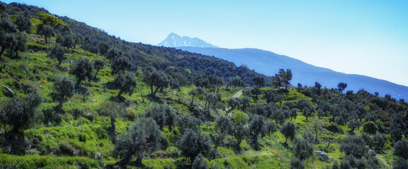 Exploring the nature of the Holy Mount of Athos in Greece