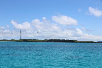 離島宮古島の珊瑚