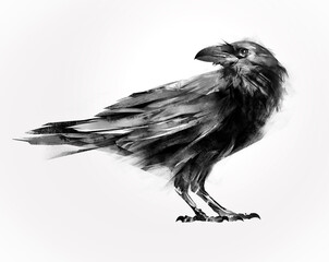 isolated painted sitting bird raven