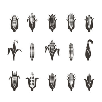 corn icon black and white. Vector illustration isolated on white background. Concept for organic products label, harvest and farming, grain, bakery, healthy food.