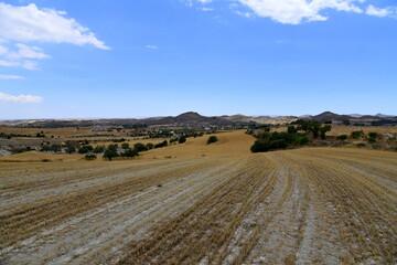 Landscape of nature round Nicosia, Cyprus