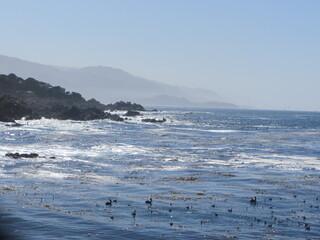 Oceanic Ocean