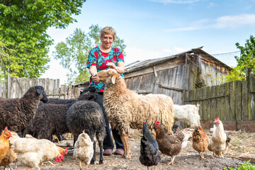Woman at her sheep farm, animals and nature