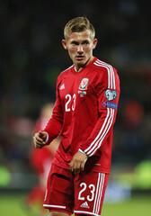 Wales v Bosnia-Herzegovina - UEFA Euro 2016 Qualifying Group B