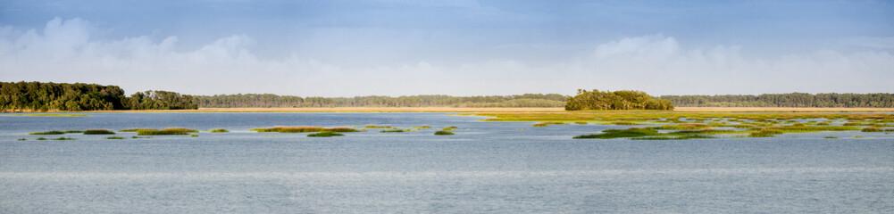 panorama of coastal estuary and forest in South Carolina