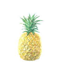 1001833 Single picture of pineapple