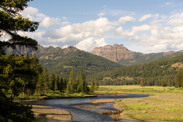 Lamer River Flows Through Valley Yellowstone National Park