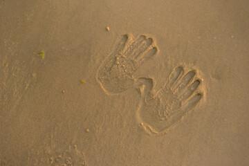 Handprints on the sand. Wet sand.