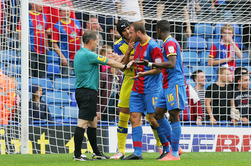 Crystal Palace v Sheffield Wednesday - npower Football League Championship