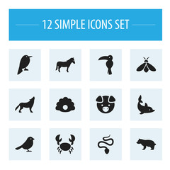 Set Of 12 Editable Zoo Icons. Includes Symbols Such As Polar Animal, Tropical Bird, Wolf And More. Can Be Used For Web, Mobile, UI And Infographic Design.