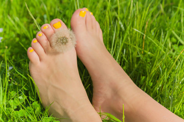 Woman's legs with yellow nails relaxing on the grass with dandelion fluff between a toes in sunny spring day.