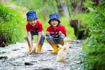 Cute children, boy brothers, playing with boat and ducks on a little river
