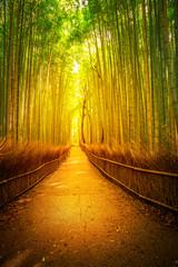 Pad in bamboebos, Sagano in Arashiyama bij zonsondergang. Het bos van Kyoto is de tweede meest populaire toeristische bestemming en beroemde fonetische stations in Japan. Meditatief luisteren concept. Verticaal schot.