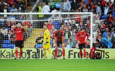 Cardiff City v Tottenham Hotspur - Barclays Premier League