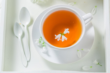 Fresh tea with honey in sunny summer day