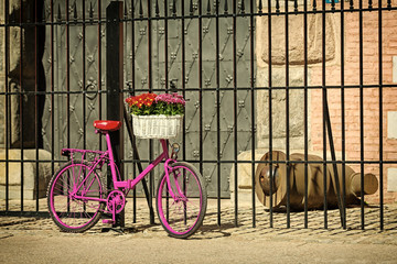 pink bike standing by old fence