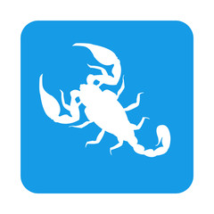 Icono plano escorpion en cuadrado azul