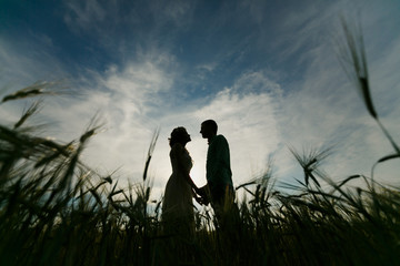 hugs lovers in silhouette against the background field at sunset