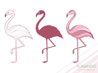 A set of flamingos. Silhouette of flamingos. A tropical bird. Vector illustration. Logo.