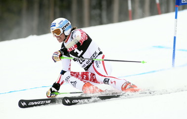 Men's World Cup Skiing Super G