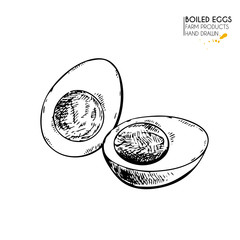 Vector hand drawn set of farm products. Isolated hen boiled egg. Engraved art. Organic sketched farming meal.