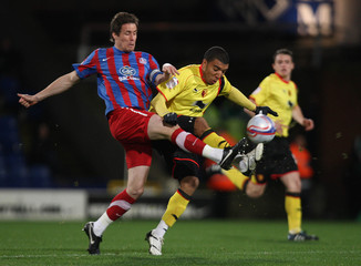 Crystal Palace v Watford npower Football League Championship