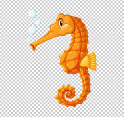 Orange seahorse blowing bubbles
