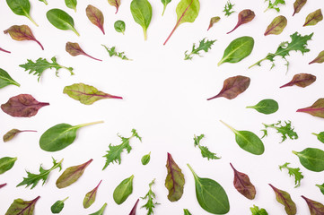 Frame made of different salad leaves on white surface. Salad leaf background. Creative food concept. Flat lay, top view