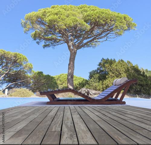 piscine proven ale l 39 ombre d 39 un pin parasol photo libre de droits sur la banque d 39 images. Black Bedroom Furniture Sets. Home Design Ideas