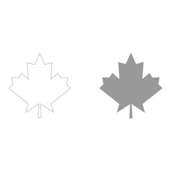 Maple leaf  the grey color icon .