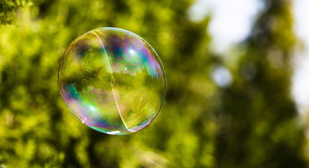 Beautiful soap bubbles fly in the nature
