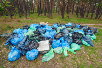 Illegal dumping of garbage in forest.Pile of Black, Blue and Green garbage bags in the forest ecology/Rubbish heap in a forest