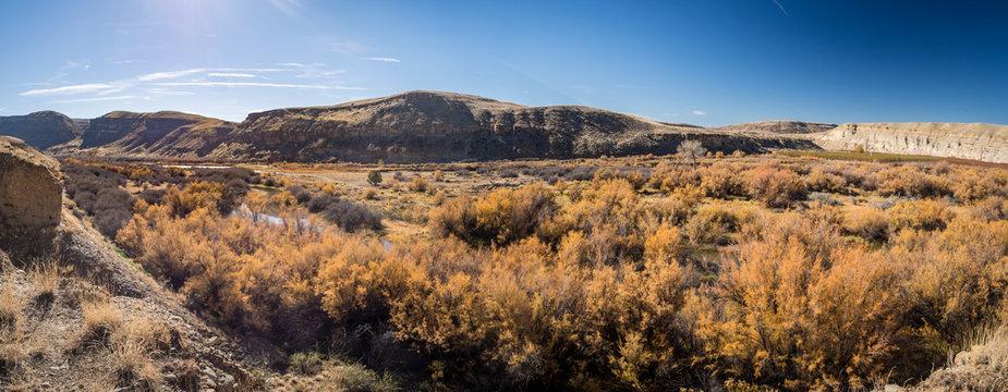 Gunnison River in Delta County, Colorado