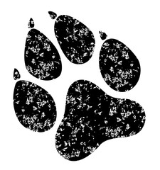 Paw Prints grunge. Vector Illustration. Isolated vector Illustration. Black on White background. EPS 10