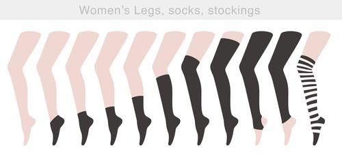 sexy women's Legs, socks, stockings, vector illustration
