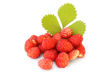 Wild strawberry with green leaf