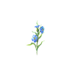 Bright watercolor flower with leaf isolated on white background