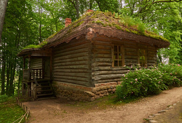 A log bathhouse/A log sauna is located on a hill in a pine forest. The foundation of the bath is stone. The roof is inclined and covered with moss.