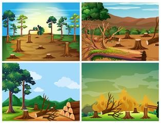Four scenes of deforestation and wild fire