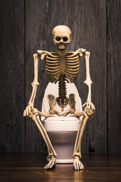human skeleton figure sitting on flush toilet at old wood wall, he smiling and happy face