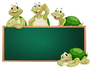 Blackboard with turtles on the frame